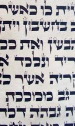 Holocaust Torah in Excellent Condition